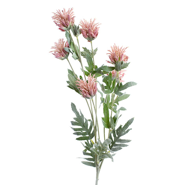 Other Artificial Flowers - Thistle Flower Light Pink (83cmH)