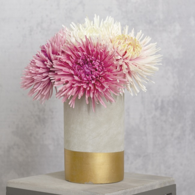 Other Flowers - Spider Chrysanthemum Pink (90cmH)