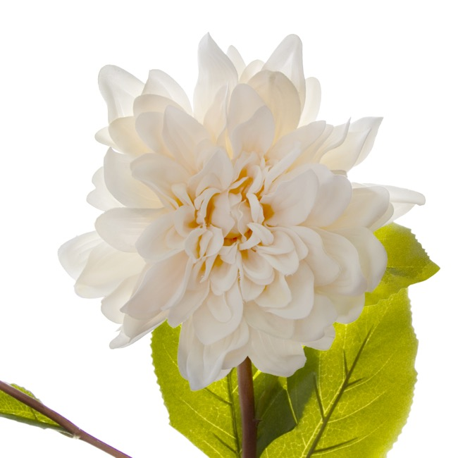 Other Flowers - Dahlia Stem Real Touch White (53cmH)