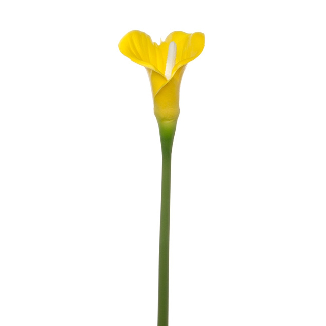 Calla Lily Open Bloom Stem (70cmST) Real Touch Yellow