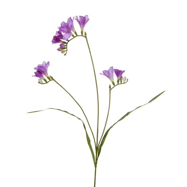 Freesia Spray with 12 Flowers Lavender (70cmH)