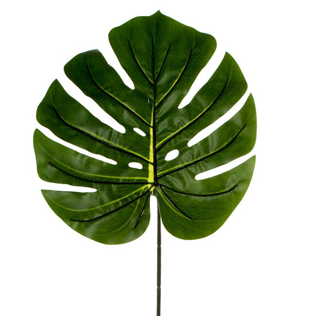 Philo Split Leaf Dark Green (100cmH)