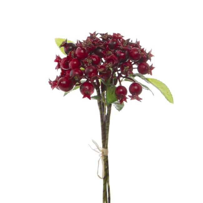 Pomegranate Berry Bunch x3 stem Red (26cm)