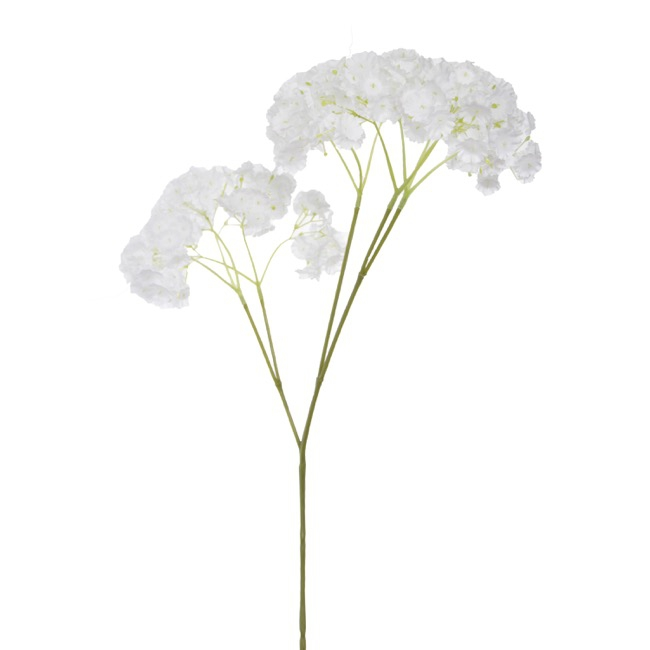 Other Flowers - Gypsophila Baby's Breath Spray White (70cmH)