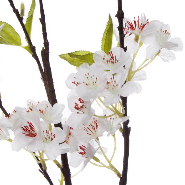 Other Flowers - Cherry Blossom Spray White (120cm)