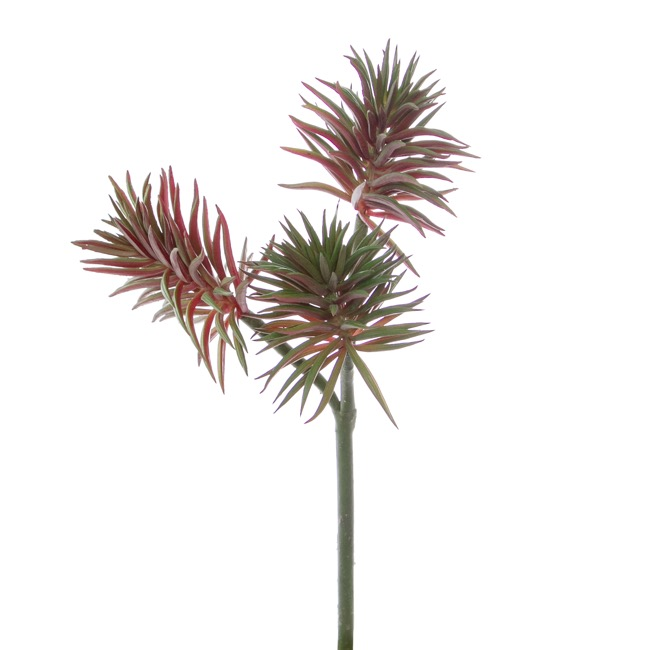 Artificial Succulents - Artificial Succulent Pine Spray x3 Red Green(35cmH)