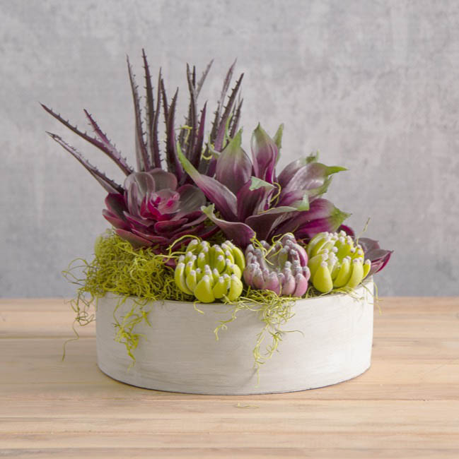 Artificial Succulents - Artificial Succulent Agave Small Purple (20x25cmH)