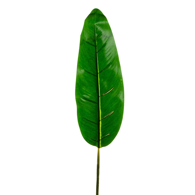 Bird of Paradise Leaf Dark Green (85cmH)