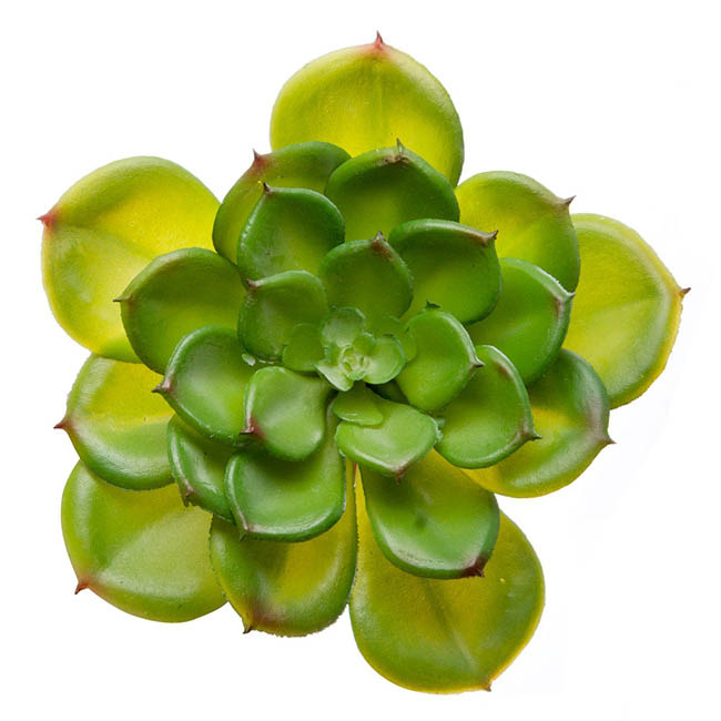 Artificial Succulents - Artificial Succulent Rosette Green (11cmx12cmH)