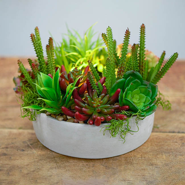 Artificial Succulents - Artificial Succulent Claw Green (12cmDx13cmH)