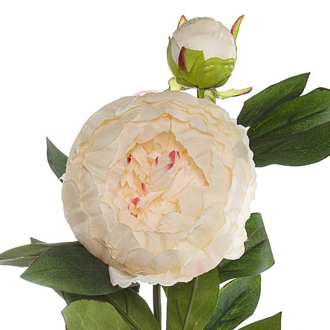 Artificial Peonies - Princess Peony Spray Cream Pink (79cmH)