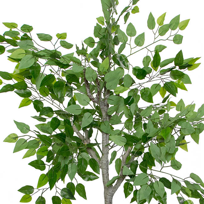 Artificial Trees - Artificial Ficus Tree Potted Green (150cmH)