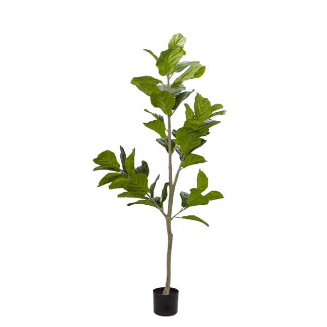 Artificial Trees - Artificial Fiddle Leaf Tree Potted Green (150cm)