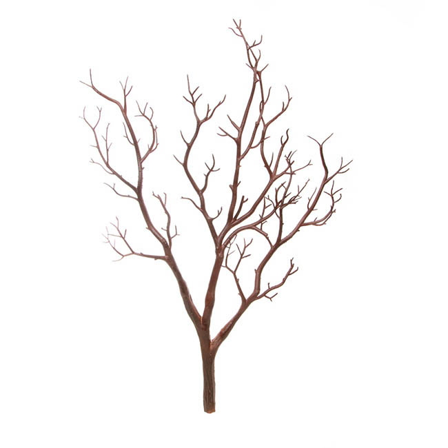 Coral Tree Twisted Branch Brown (65cmH)