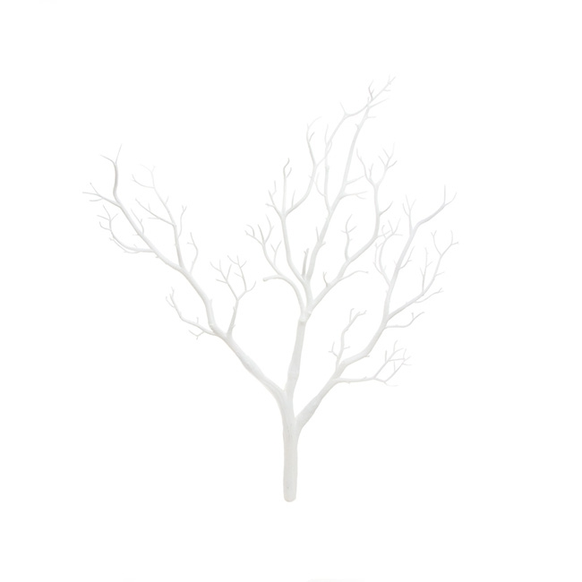 Coral Tree Twisted Branch White (65cmH)