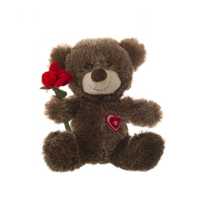 Alex Teddy Bear with Rose Chocolate (25cmST)