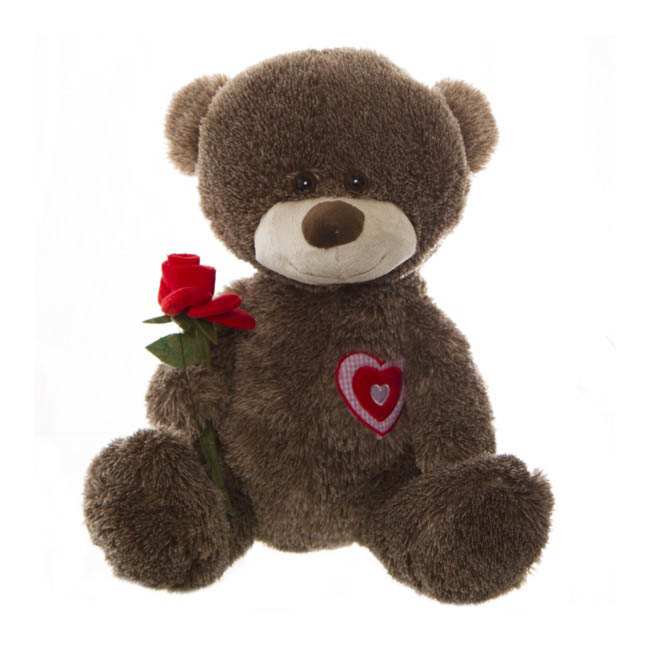Alex Teddy Bear with Rose Chocolate (30cmST)