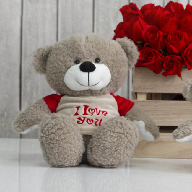 Valentines Teddy Bears - Mike Bear with Tshirt Brown (25cmST)