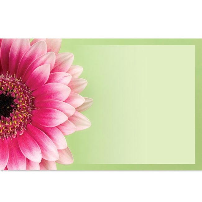 Cards Gerbera Pink with Border Green Card50 Pack (10x6.5cmH)