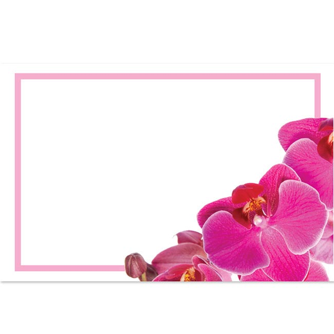 Cards Pink Orchid Phalaenopsis with Border 50 Pack (10x6.5cm
