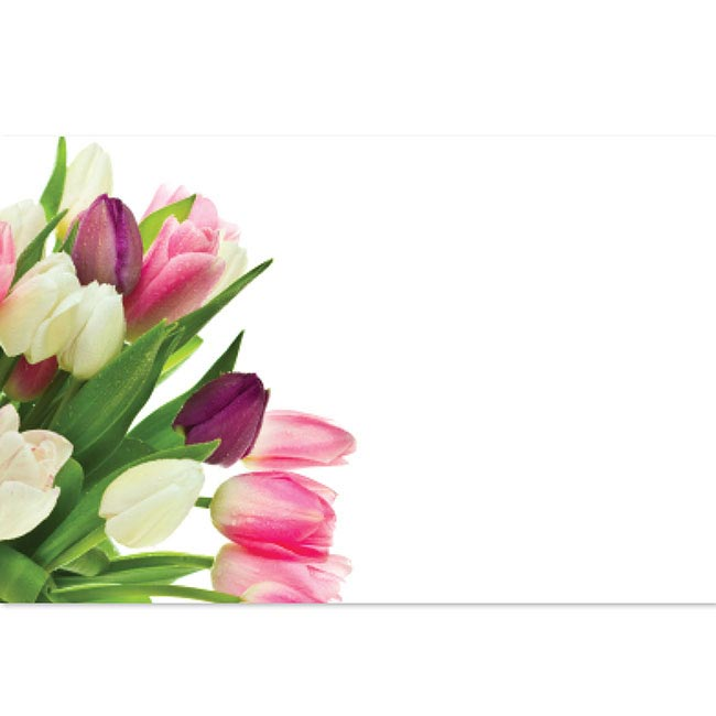 Cards Tulip Bunch 50 Pack (10x6.5cmH)