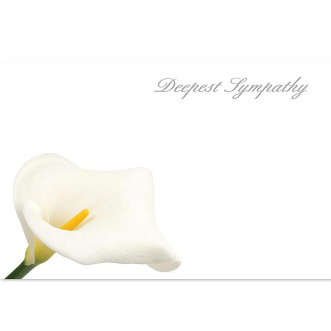 Cards Calla Lily Deepest Sympathy 50 Pack (10x6.5cmH)