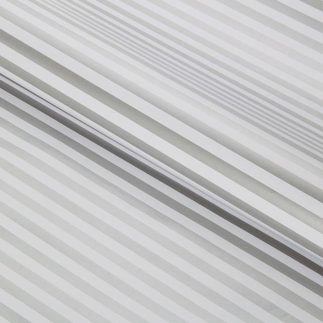 Counter Roll Awning Stripes Gloss 80gsm 50cmx60m Silver