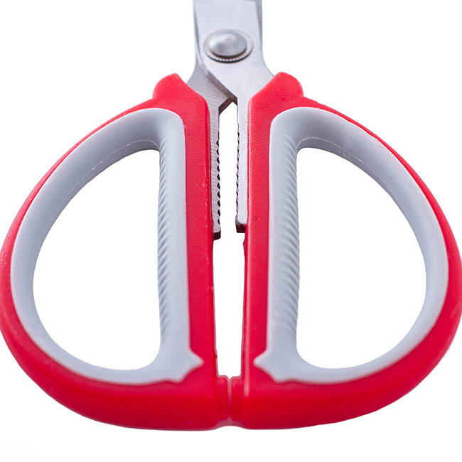 Scissors Shears Floral Cutters - Scissors Florist and CRAFT Red & Grey (19cm - 7.5