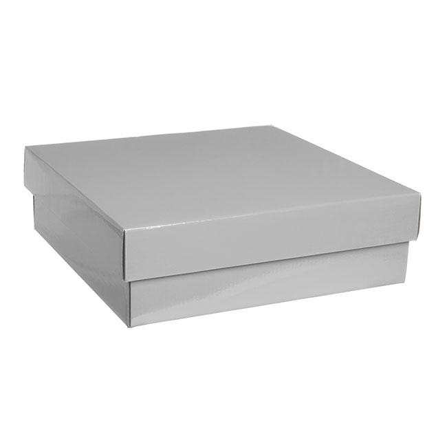 Gourmet Box Square Large Silver (28x28x9cmH)