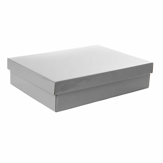Gourmet Box Rectangle Large Silver (40x30x9cmH)