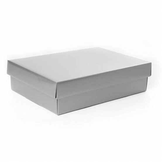 Gourmet Box Rectangle Small Silver (33x23x9cmH)
