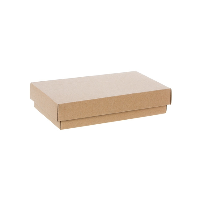 Gourmet Box Rectangle Mini Brown Kraft (25x15x5.5cmH)