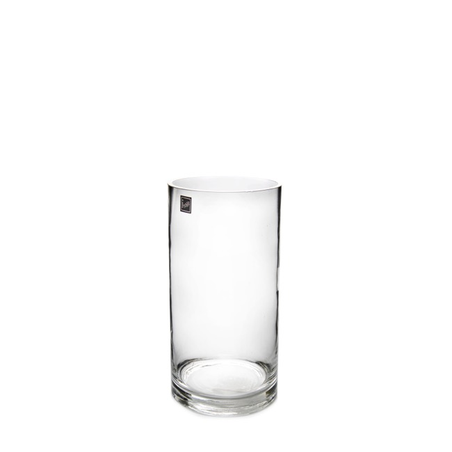 Glass Cylinder Vase 9Dx16cmH Clear