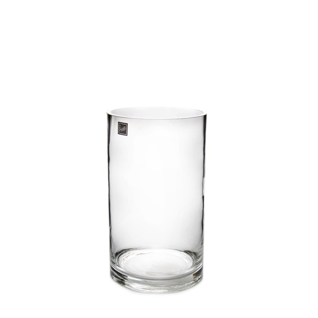 Glass Cylinder Vase 12Dx22cmH Clear