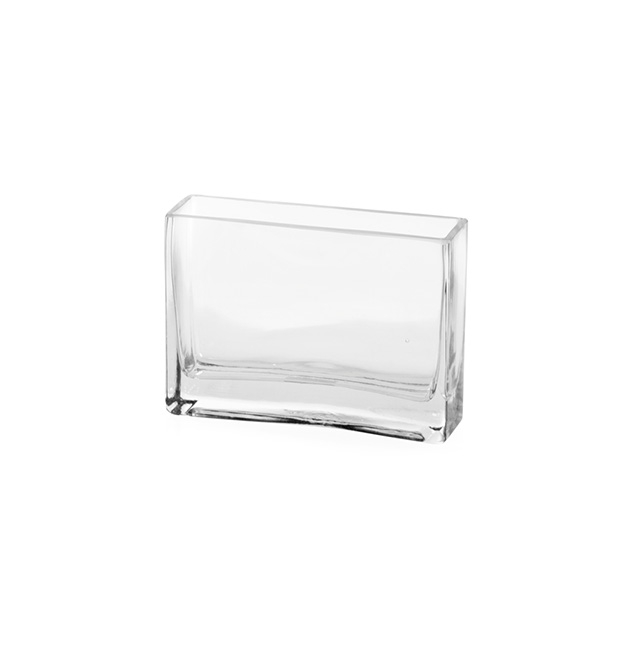 Cube and Square Vases - Glass Rectangle Vase (5x15x10cmH) Clear