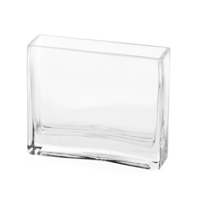 Glass Rectangle Vase 6x18x18cmH Clear
