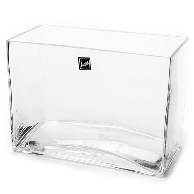 Cube and Square Vases - Glass Rectangle Vase (20x10x15cmH) Clear