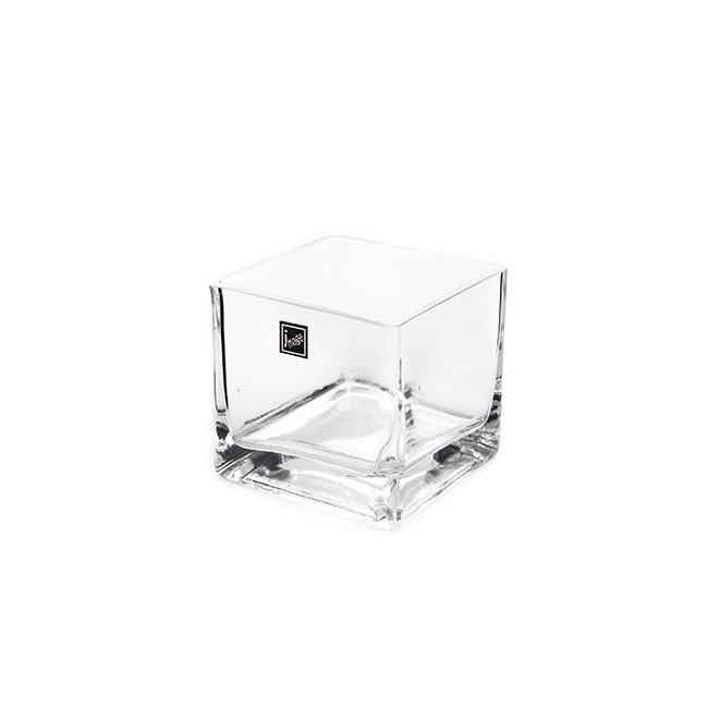 Glass Square Vases - Glass Cube Vase 10cm Clear (10x10x10cmH)