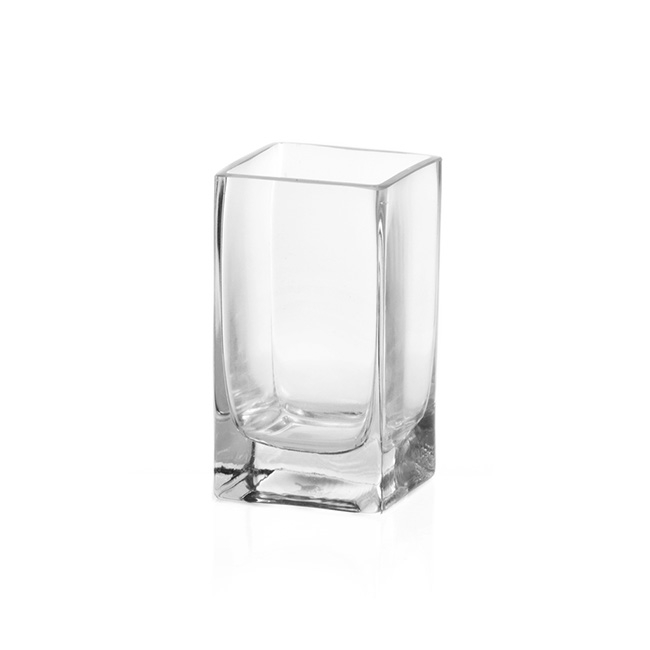 Cube and Square Vases - Glass Square Tank Vase 10cm Clear (10x10x15cmH)