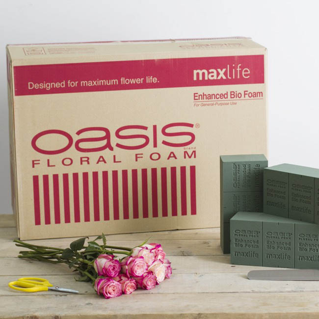 Oasis Floral Foam Bricks - Oasis Biodegradable Floral Foam Maxlife 48 Bricks
