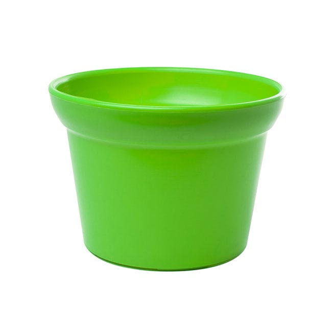 225 & Plastic Pot Large Lime Green (17Dx12cmH)