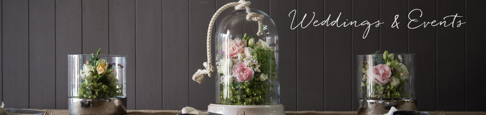 Wedding decorations wedding supplies accessories koch co junglespirit Gallery